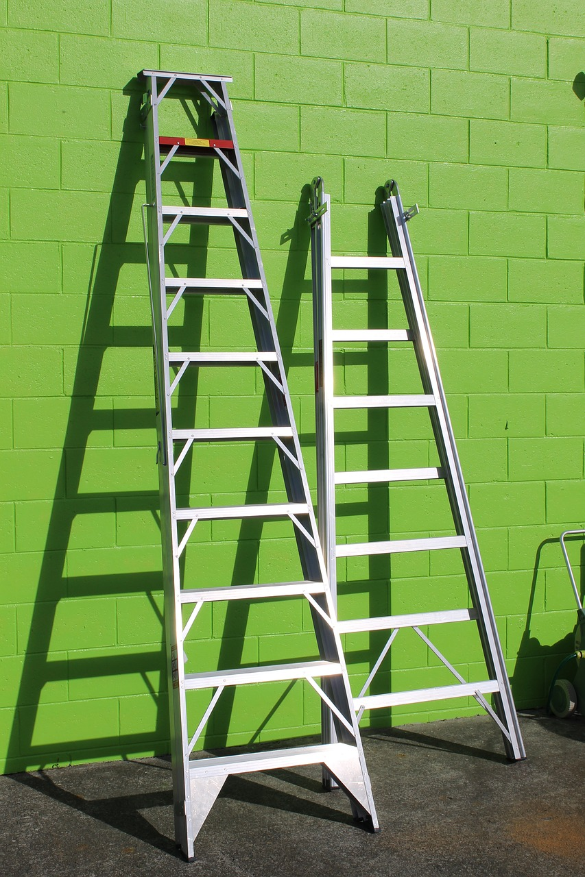 Want a Ladder? There are so many to choose from...